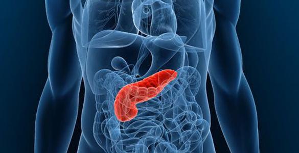 ayuda-a-tu-pancreas